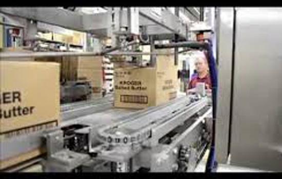 Massman Continuous Motion Case Packer
